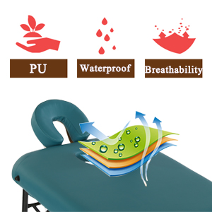 Artechworks Pu leather massage table